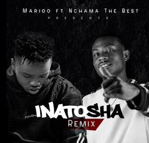 Download Audio | Nchama the Best ft. Marioo - Inatosha Remix