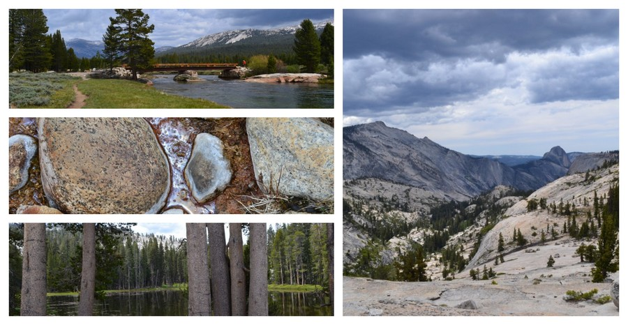 Visite Parc national Yosemite