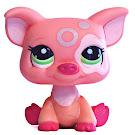 Littlest Pet Shop Blythe Loves Littlest Pet Shop Pig (#2205) Pet