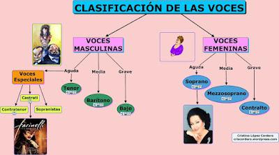 CLASIFICACIÓN DAS VOCES