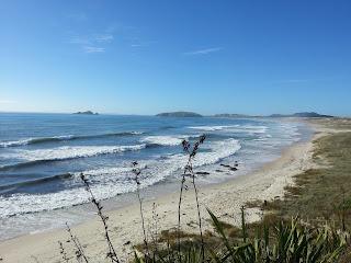 Henderson Bay Surfers Beach