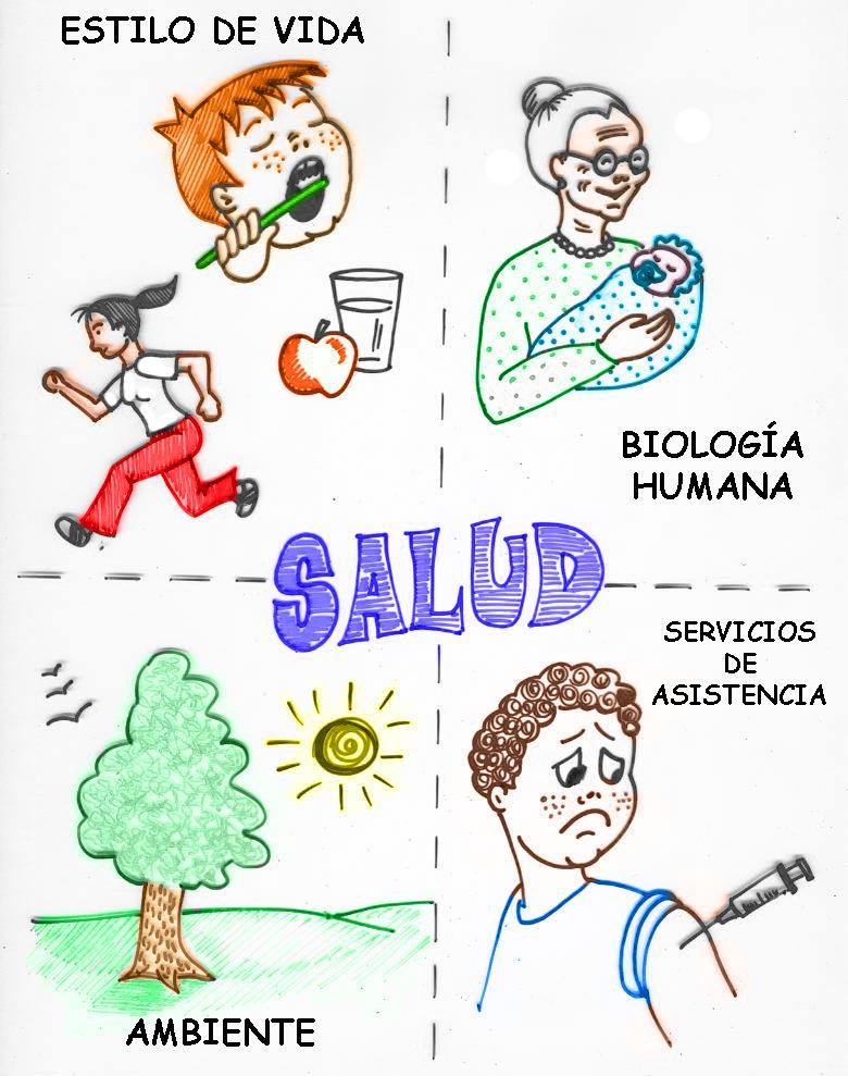 SALUD Y SOCIEDAD Determinantes Sociales De La Salud