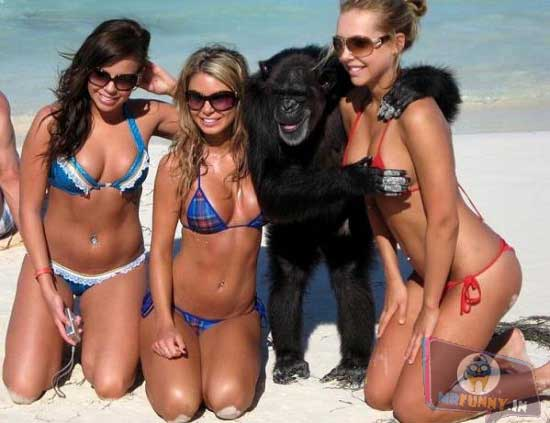 If you don't believe in Evolution, this picture is proof. This guy is going bananas over these girls