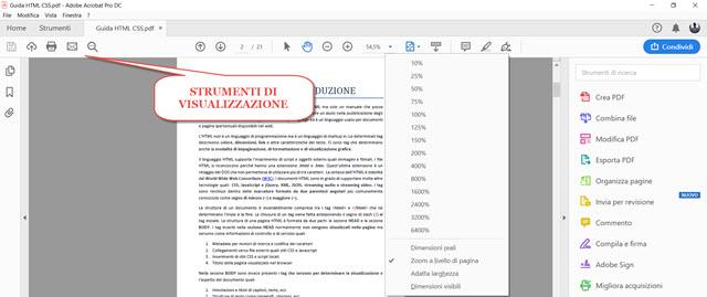 visualizzazione-pdf