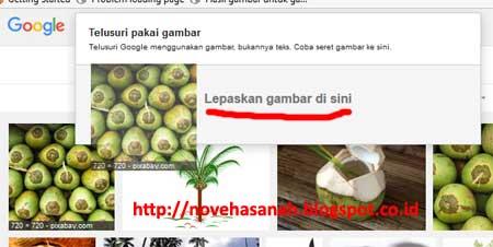 cara lainnya untuk memanfaatkan pencarian gambar google adalah dengan menyeret gambar atau melakukan drag ke kotak pencarian