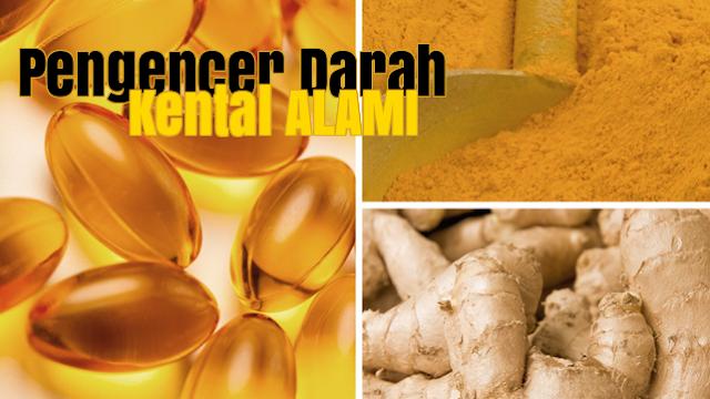 Daftar Tanaman Herbal Pengencer Darah Kental