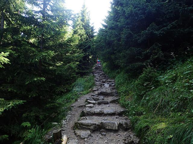 Siodłowa Perć to momentami wąska ścieżka z kamienia