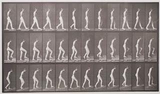 A series of photographs of a nude woman walking.