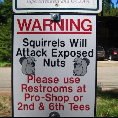 Warning Squirrels Will Attack Exposed Nuts
