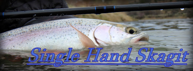 Single Hand Skagit - How to get started