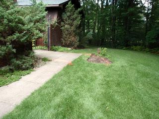 America S Pros Michigan Property Repair And Maintenance