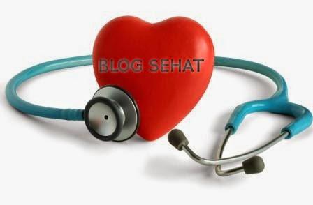 Membangun blog yang sehat dan bersahabat dengan mesin pencari