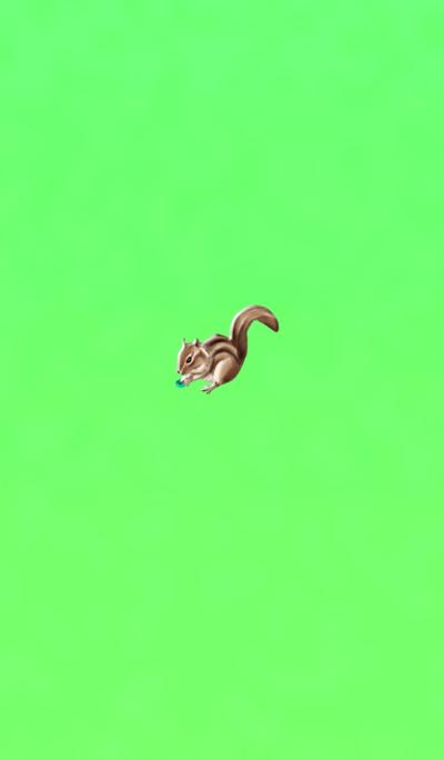 Blue Green Tree Squirrel