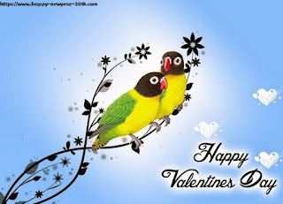 valentine day 2018 parrots