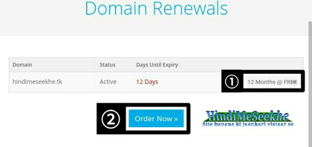 Freenom_website_domain_renewals