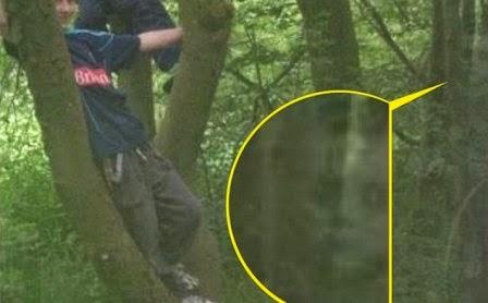 Kisah Misteri  Wanita Inggris Tangkap Foto Hantu di Balik Pohon