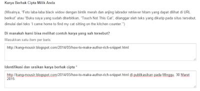 Cara Melaporkan Blog Copas Artikel Ke DMCA