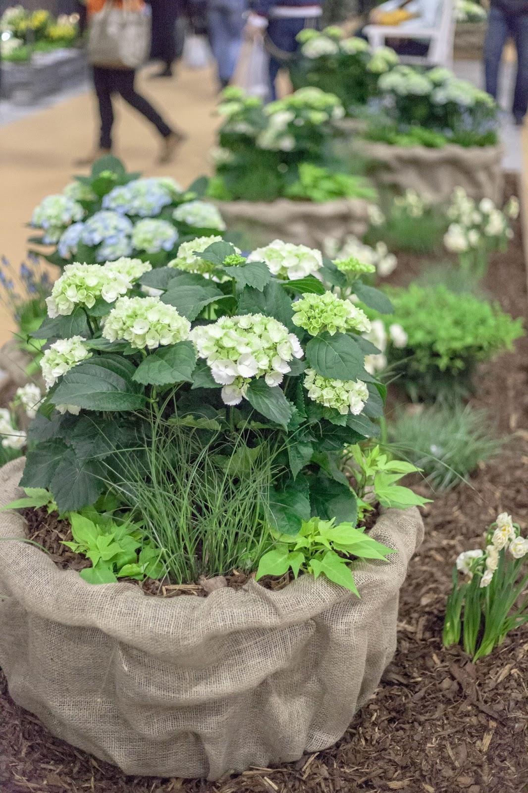 supermessut 2017 puutarha