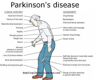 Apa yang jadi Penyebab Utama Penyakit Parkinson