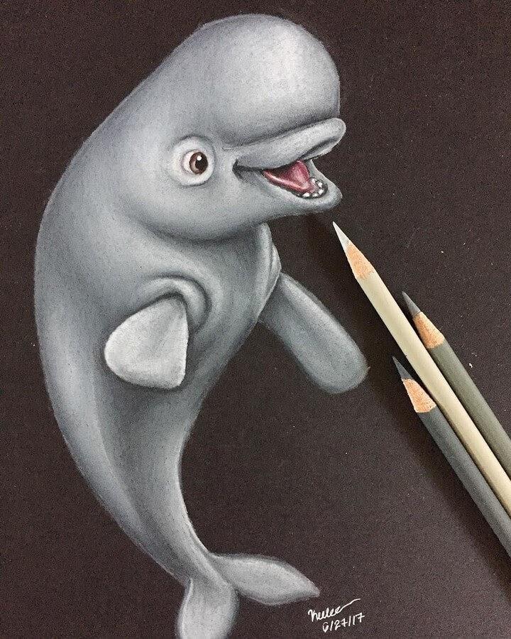 06-Beluga-Whale-Keelee-www-designstack-co