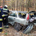 Renault wypadło z drogi. W środku podróżowały trzy osoby [foto]