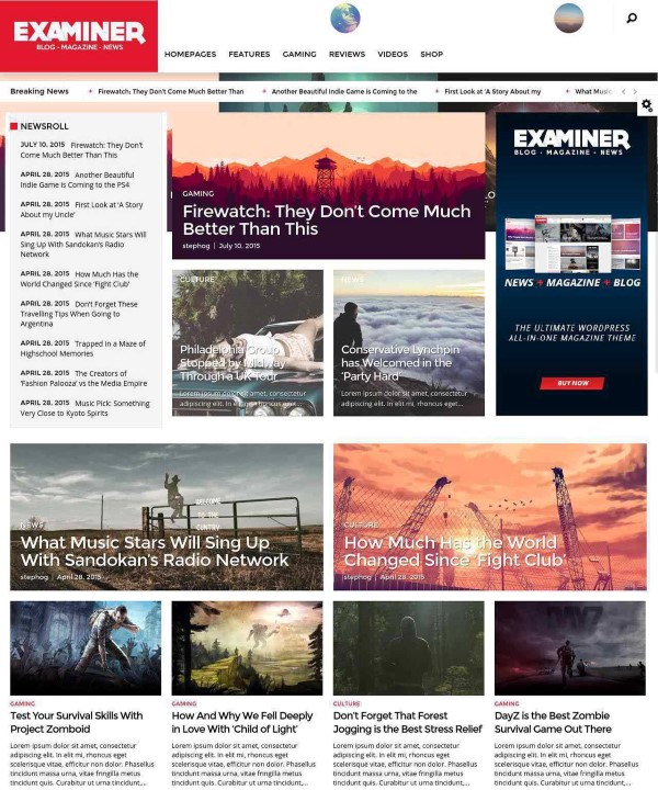 Examiner news website theme