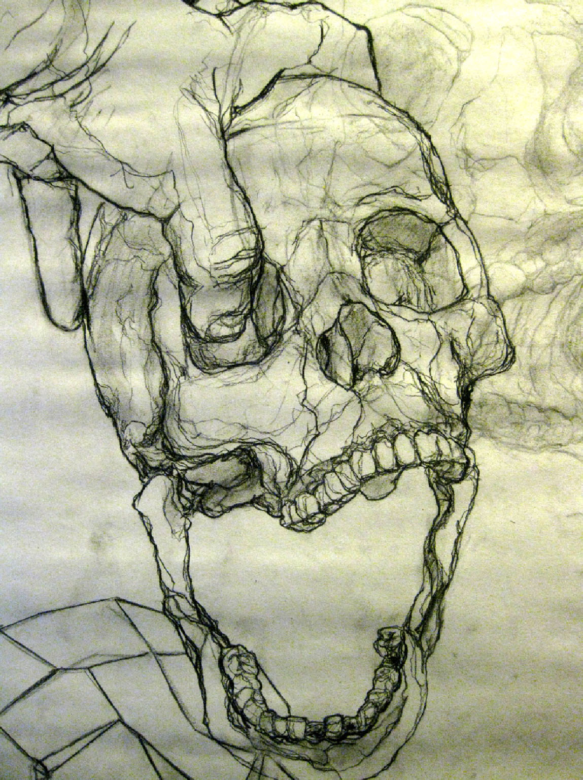 Drawing Foundations Contour Line Drawing
