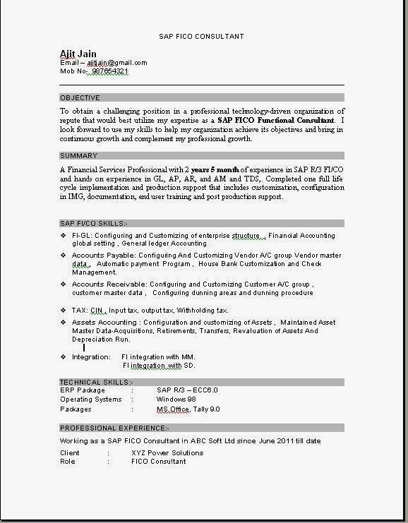 Resume Templates - sap sd consultant sample resume