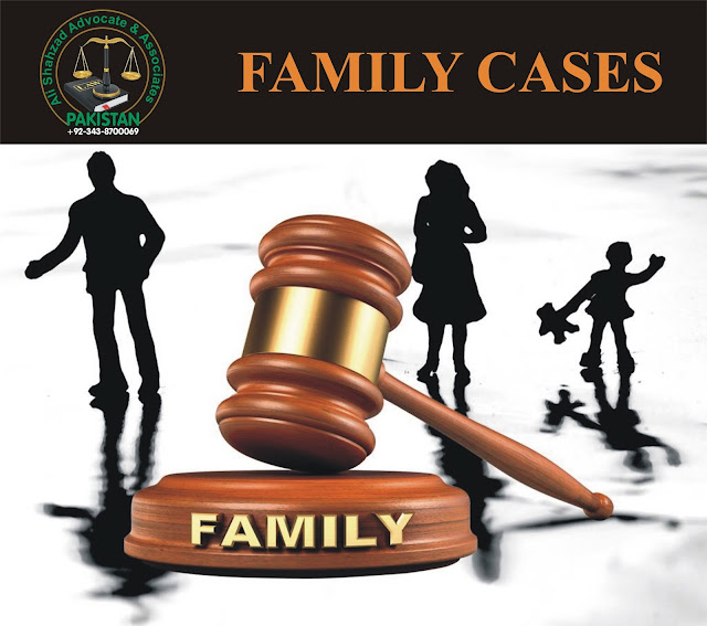 family case lawyer,