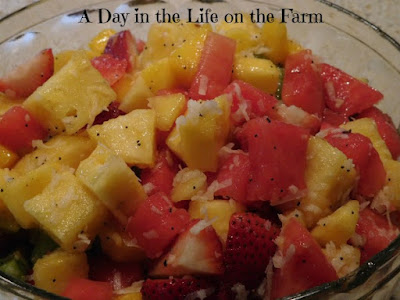 lynd fruit farm tropical fruit salad