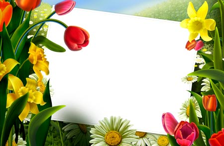 Beautiful Photoshop Frames For Editing Pictures Whatz More