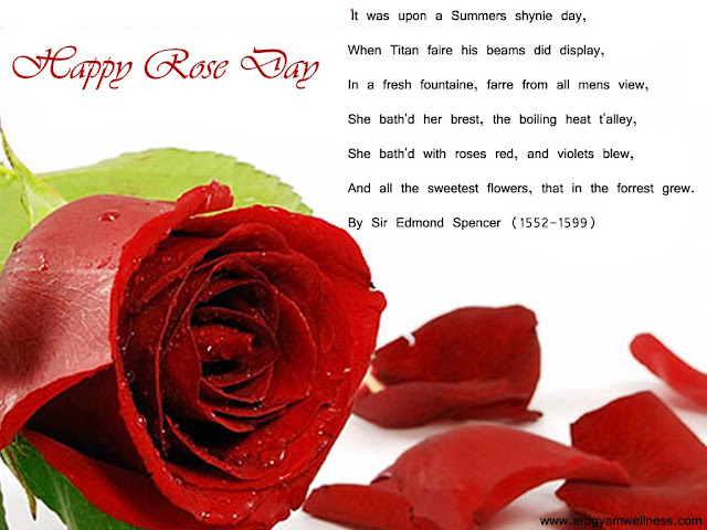 rose day10