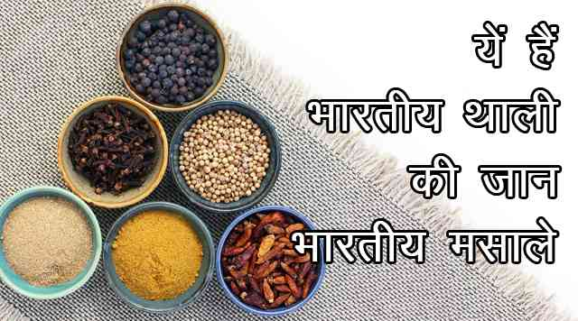 list of spices in hindi and english pdf
