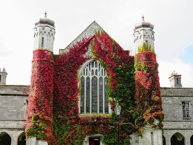 The Best Places in Ireland to Visit By Train from Dublin: Autumn foliage at NUI Galway