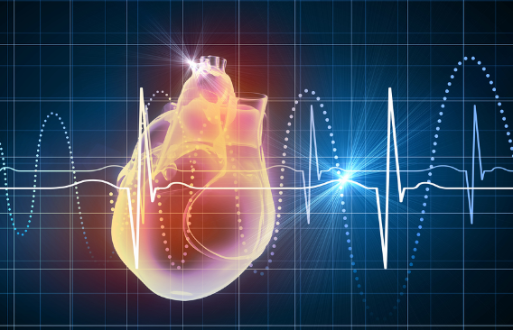 What Is A Healthy Heart Rate -| What Affects Heart Rate -| What Is Maximum Heart Rate|