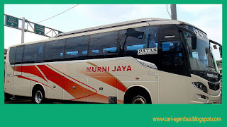 Cari Nomor Telepon Agen Bus Murni Jaya