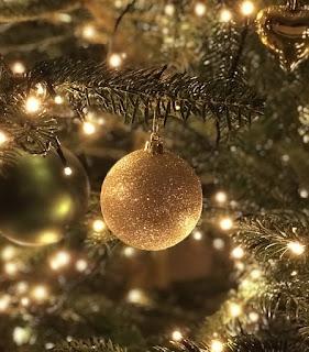 El Hospital de Alicante acoge la celebración de la Fiesta de Navidad del Colegio de Enfermería de Alicante