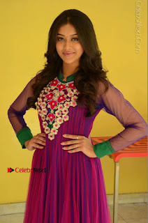 Actress Pooja Jhaveri Latest Stills in Purple Salwar Kameezt at Dwaraka Success Meet  0083.JPG
