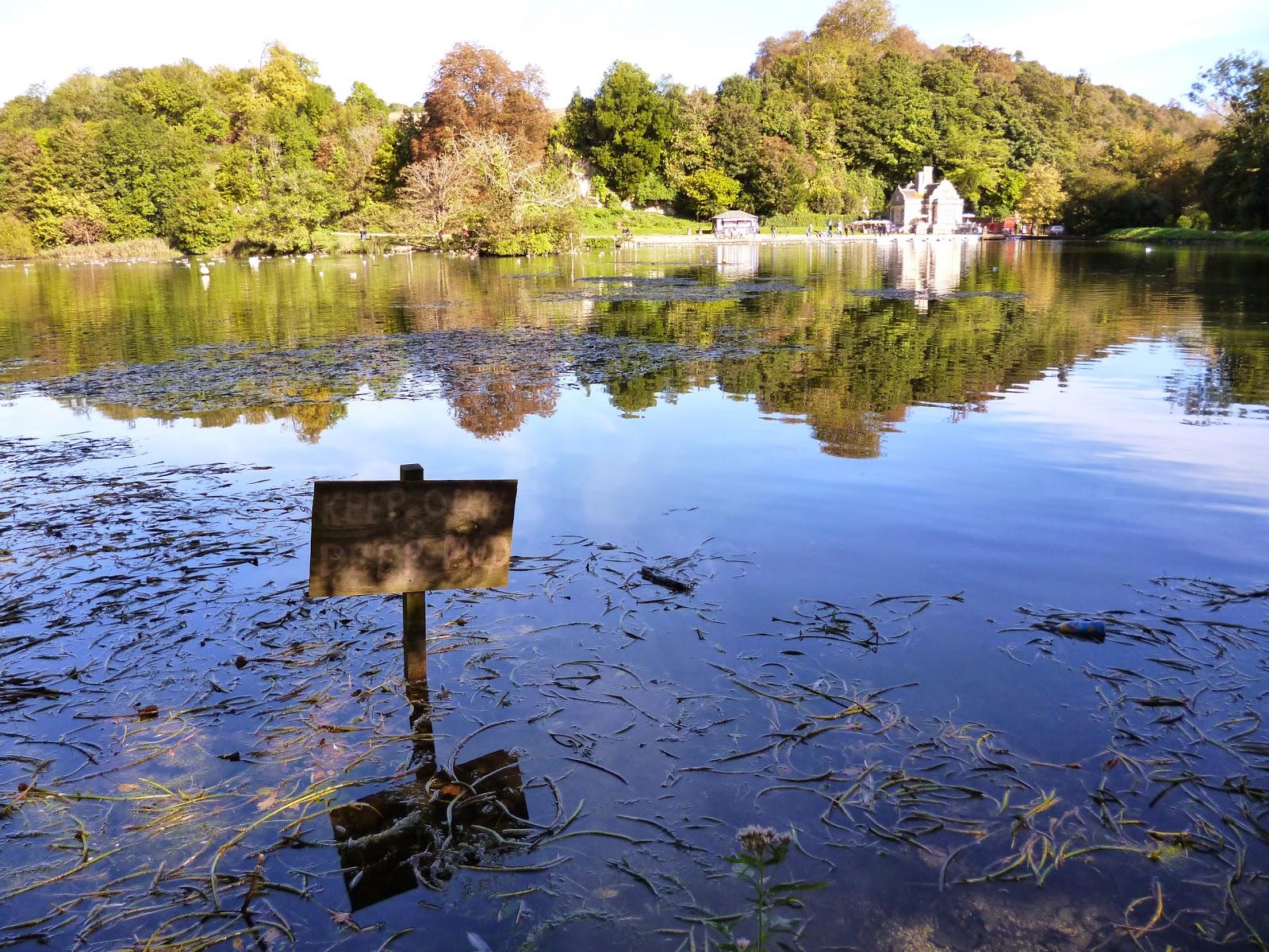 swanbourne lake arundel