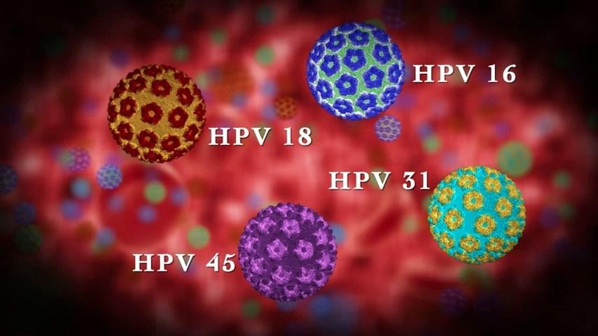 penyebab kutil HPV