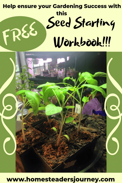 Free Starting seeds workbook!! Makes it easy to track seeds so you can have a successful garden! Bonus seed starting and homemade fertilizers included!! #startingseeds #mastergardener #homesteader