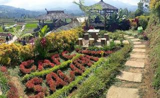 Cafe Sawah Pujon Kidul Malang, Ngopi Diatas Gunung