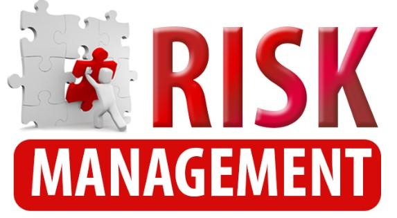 Komponen Manajemen Risiko