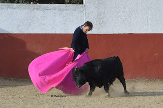 Viaje a Salamanca (y II)
