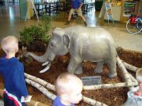 Recreación de un elefante pigmeo