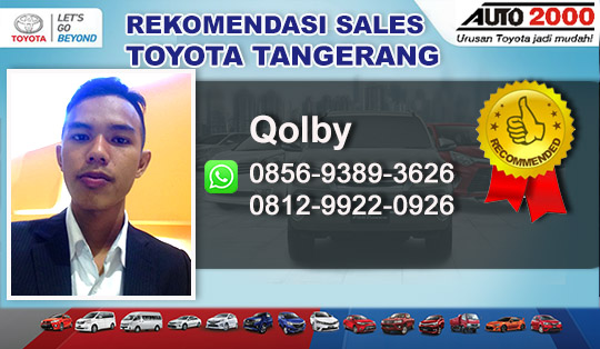 Rekomendasi Sales Toyota Serang Pandeglang Banten