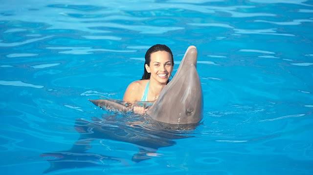 Como é o Dolphin Island Park em Punta Cana?