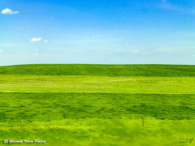 Praderas de Dakota del Sur por El Guisante Verde Project