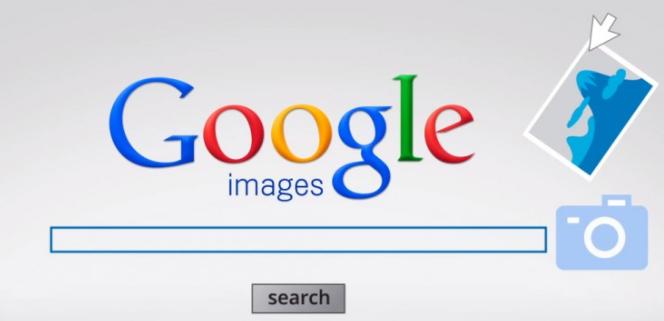 اكثر-من-موقع-بحث-بالصور-للبحث-عن-معلومات-عن-الصورة