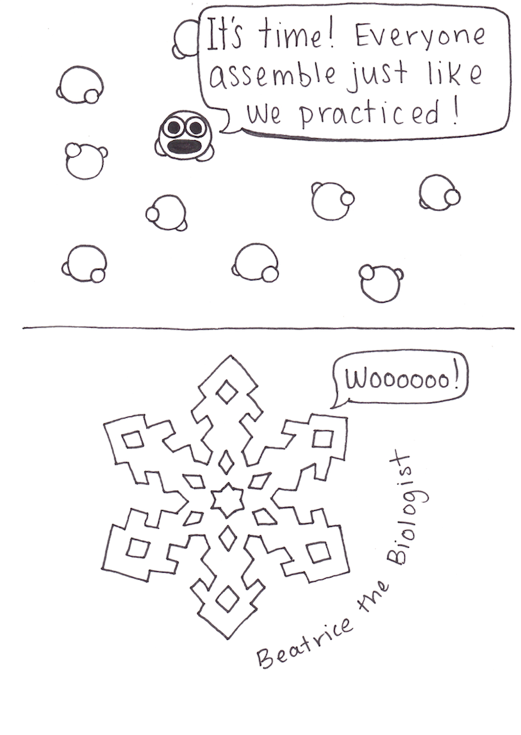 Beatrice the Biologist: Snowflake